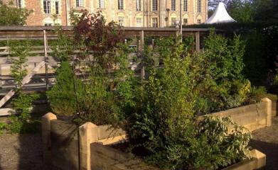Jardinières modulaires en bois image 3